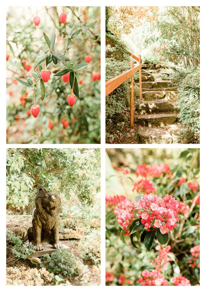Leonardslee Gardens wedding photography | Horsham garden wedding photographer