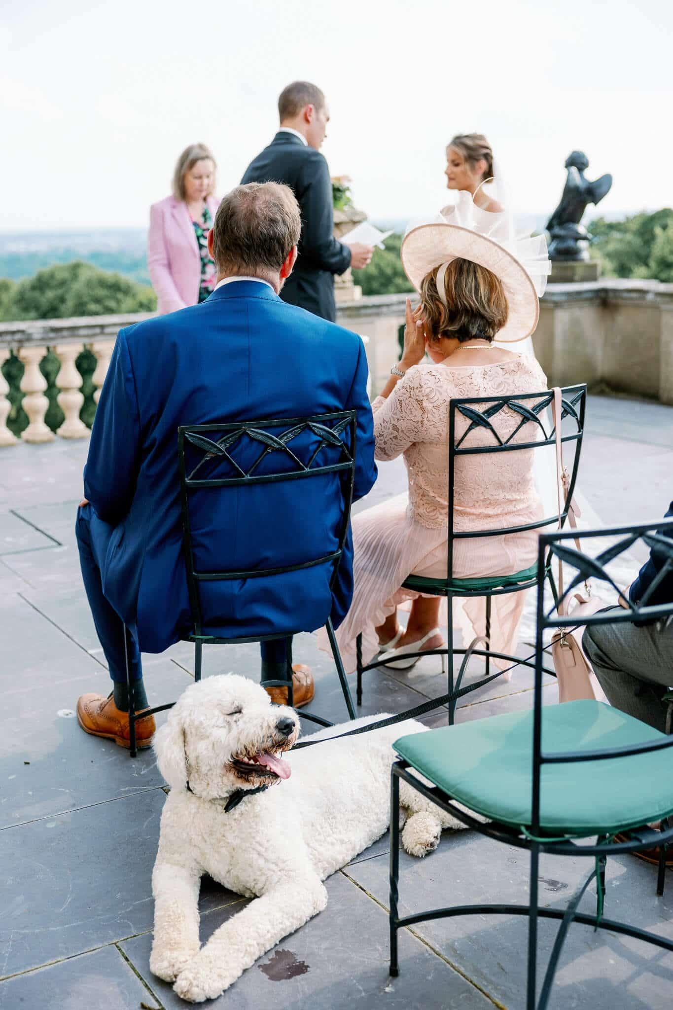 Dog at wedding ceremony at Cliveden House wedding venue