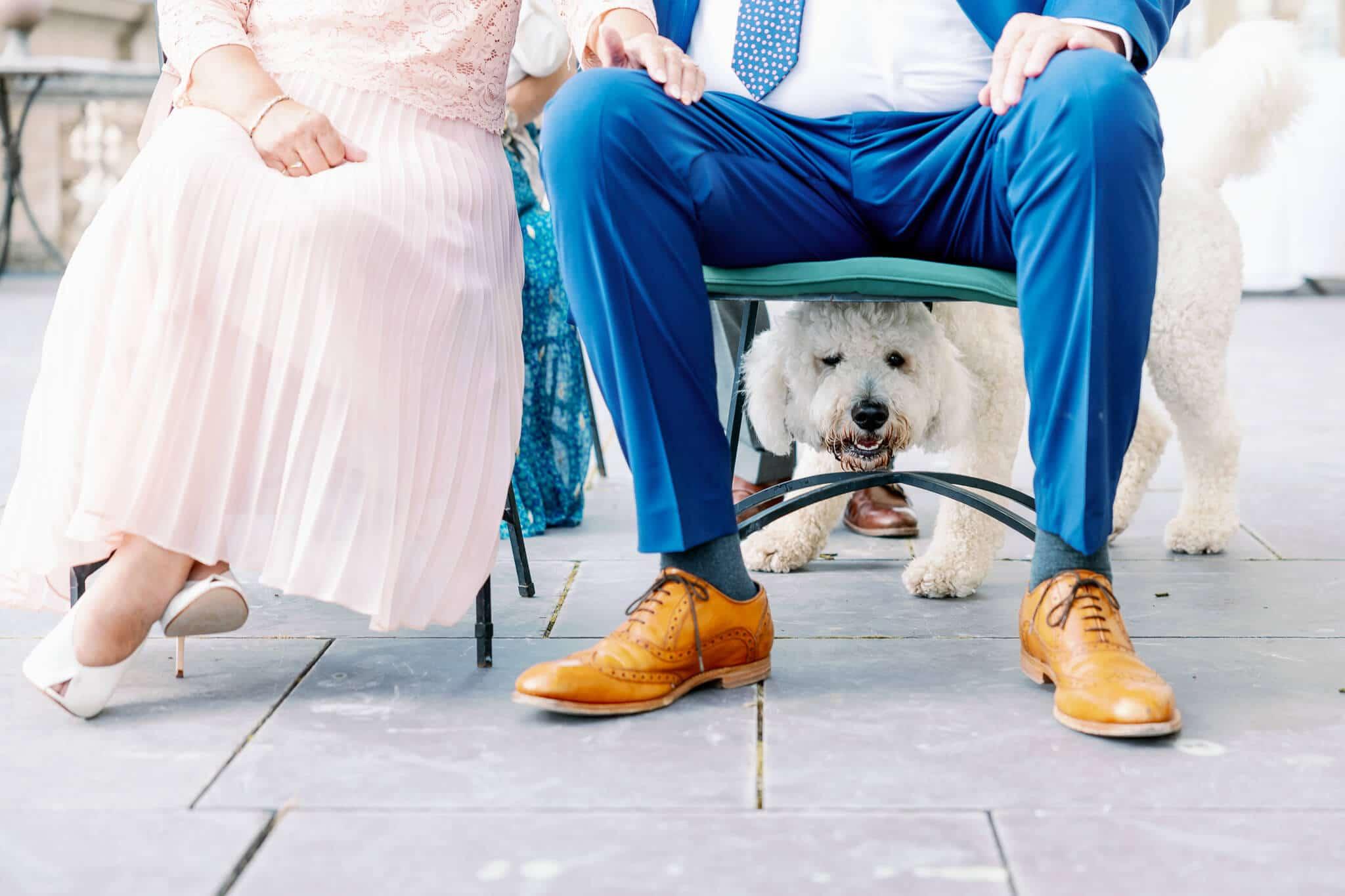 Dog-friendly ceremony wedding venue in London | Wedding Photography in West London